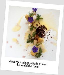 asperges, sapin-amandier polaroïd complet