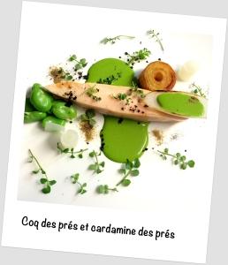coq des prés-cardamine-philippe fauchet polaroïd complet