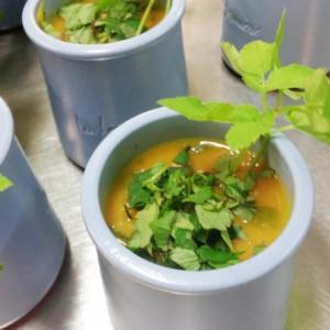 Egopode podagraire cuisine sauvage asbl for X uv cuisine